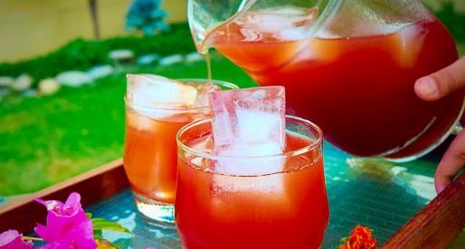 Falsay ka Sharbat, Grewia Asiatica Drink